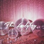 "Recensione dal Blog ""The Lady Boy"" 18"