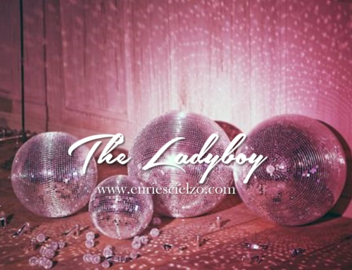 "Recensione dal Blog ""The Lady Boy"""