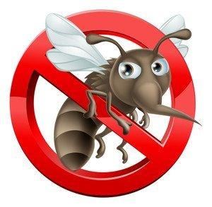 Zanzare come Difendersi: 4 Soluzioni Naturali 7